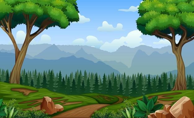 Waldweg, der sich durch die bäume schlängelt