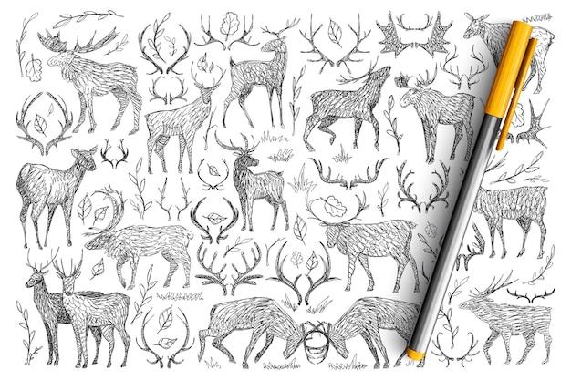 Waldwildhirsche gekritzel gesetzt. sammlung von handgezeichneten hirschen mit hörnern, die in der wilden natur leben und isoliert kämpfen.