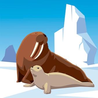 Walross und siegel zusammen arktischer eisberg-nordpolillustration