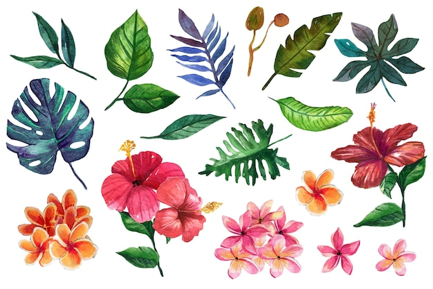 Warme farbige blüten und tropische blätter