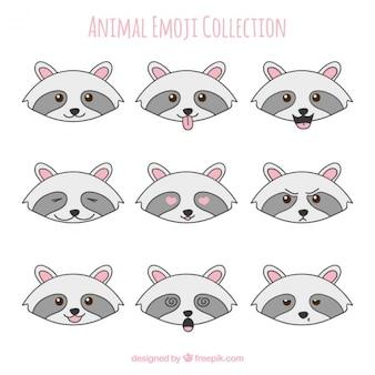 Waschbär emoticons mit verschiedenen gesichtsausdrücken