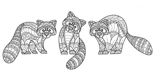 Waschbärenmuster. hand gezeichnete skizzenillustration für malbuch für erwachsene