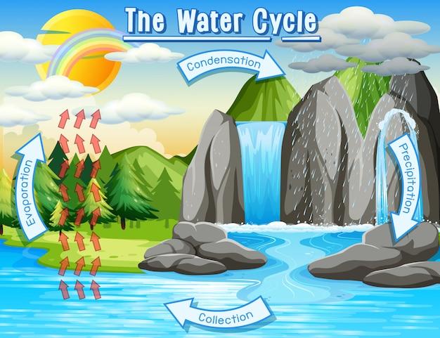 Wasserkreislauf auf der erde