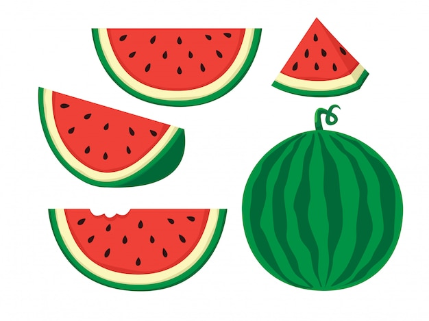 Wassermelone abbildung