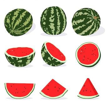 Wassermelone ganz, halb und in scheiben schneiden. vektorkarikatursatz des sommers trägt die lokalisierte illustration früchte