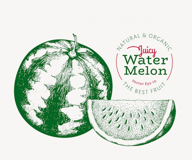 Wassermelone und ein stück wassermelone.