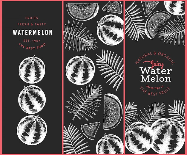 Wassermelone und tropische blätter eingestellt.