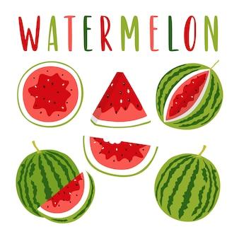 Wassermelonenillustration eingestellt mit beschriftung.
