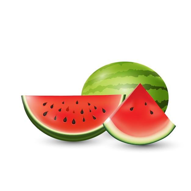 Wassermelonenscheiben-vektorillustrations-sommerfrucht.