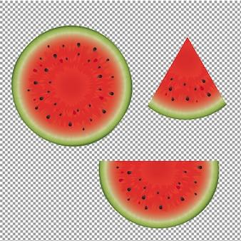 Wassermelonenset mit verschiedenen stücken illustration