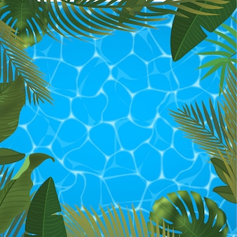 Web sommer banner. grüne palmblattschablone auf pooloberflächenhintergrund. sommer abstrakte illustration. realistisches bild tropisches paradies für reisen und ticketverkauf.