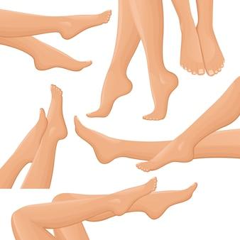 Weibliche beine eingestellt