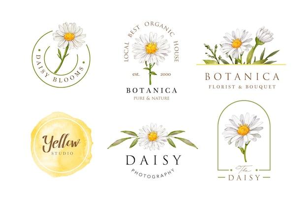 Weibliche logo-entwurfsschablone der aquarell-gänseblümchenblume Premium Vektoren