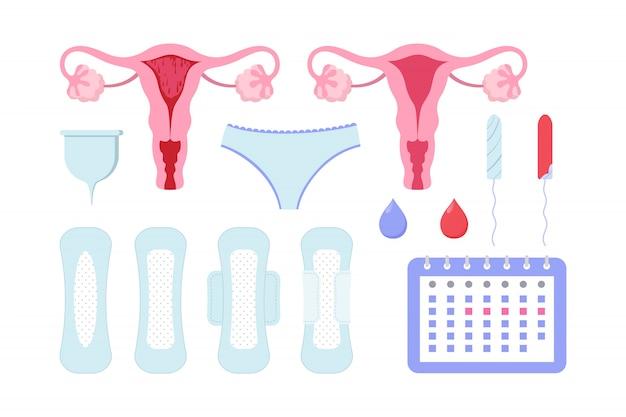 Weibliche perioden eingestellt