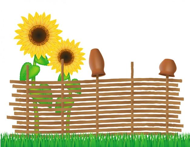 Weidenzaun von zweigen mit sonnenblumen vector illustration