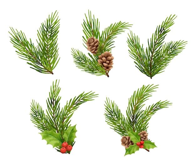 Weihnachten tannenzweig dekorationen aquarell stilholly beere tannenzapfen fichte