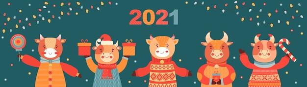 Weihnachts- und neujahrsbanner. bullen mit geschenken und süßigkeiten. symbol 2021 ox. festlicher vektorhintergrund