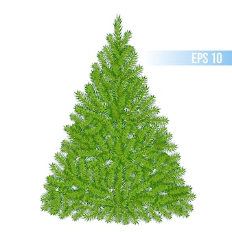 Weihnachtsbaum des vektors grüne farb