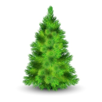 Weihnachtsbaum mit grünen niederlassungen für die verzierung der realistischen vektorillustration des hauses
