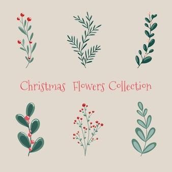 Weihnachtsblumensammlung mit dekorativen winterpflanzen von winterbeeren eines weihnachtsbaums