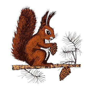 Weihnachtseichhörnchen und tier mit tannenzapfen im wald. winterferien. gravierte hand gezeichnet in der alten skizze und im vintage-stil für postkarten. neujahrssymbol.