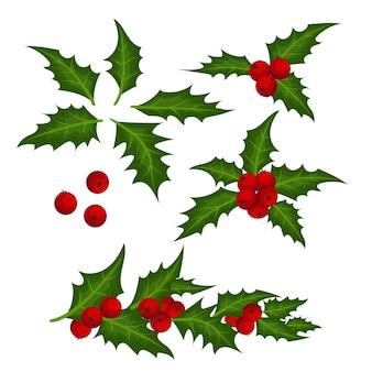 Weihnachtselemente mit satz stechpalmenblättern und -beeren.