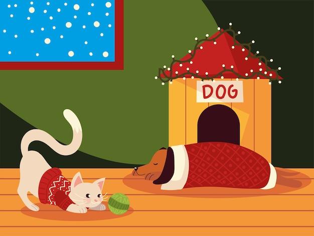 Weihnachtsniedliche katze und hund mit pullover im haus