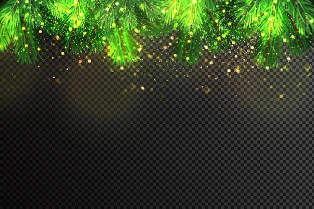 Weihnachtstannenzweige und goldenes funkeln