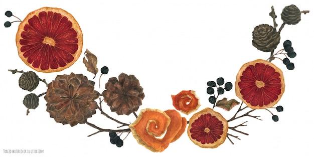 Weihnachtsvignette mit getrockneten orangen und winterpflanzen