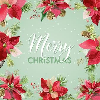 Weihnachtswinter weihnachtsstern blüht hintergrund, karte oder banner mit platz für ihren text