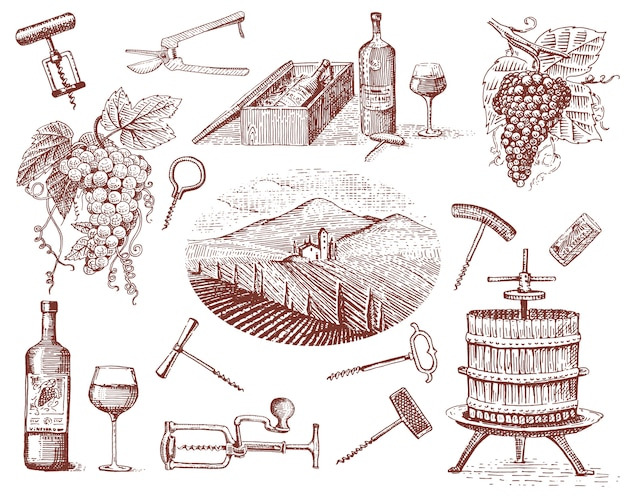 Weinernteprodukte, presse, trauben, weinberge korkenzieher glasflaschen im vintage-stil, gravierte hand gezeichnet