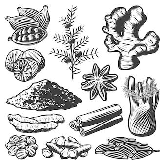 Weinlese-gewürzsammlung mit kreuzkümmel-muskat-sternanis-kardamom-fenchel-zimtpulver-rosmarin-ingwer-kurkuma-nelken-koriander isoliert