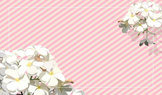 Weinlese tropische frangipaniblume auf streifenpastellrosa hintergrund