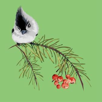 Weinleseblumengrußkarte, frühlings- oder sommerdekoration mit trockenem kiefernzweig, roten beeren, eberesche, kleiner grauer vogel. bunte illustration.