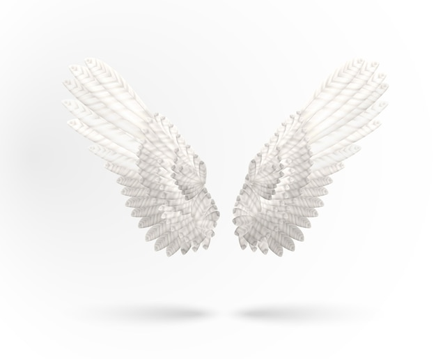 Weiße engelsflügel isoliert Premium Vektoren