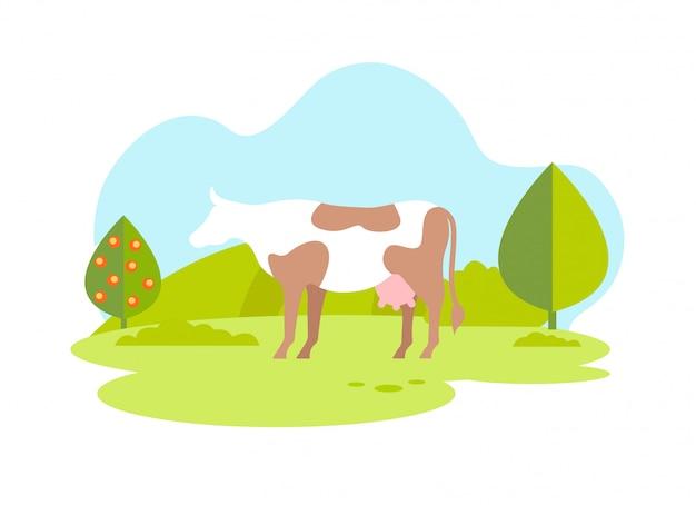 Weiße kuh mit braunen flecken auf wiese. bio-milch