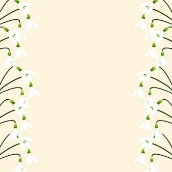 Weiße schneeglöckchen grenze