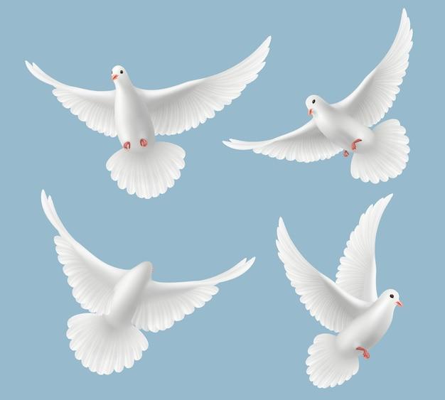 Weiße tauben. taube lieben fliegende vögel in himmelssymbolen der freiheit und hochzeit realistische bilder