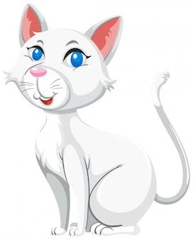 Weißer hintergrund der netten weißen katze