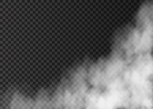 Weißer nebel auf transparentem hintergrund isoliert. dampf. realistische vektorfeuerrauch- oder nebeltextur.