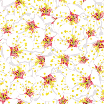 Weißer pflaumen-blüten-blumen-nahtloser hintergrund