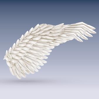 Weißer vogelflügel