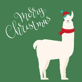 Weißes lama in wintermütze und schal