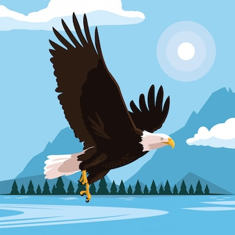 Weißkopfseeadlervogelfliegen mit landschaft