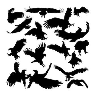 Weißschwanzadlertier-silhouetten