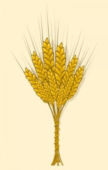Weizen-, gersten- oder roggenähren werden zu einem bündel verwoben