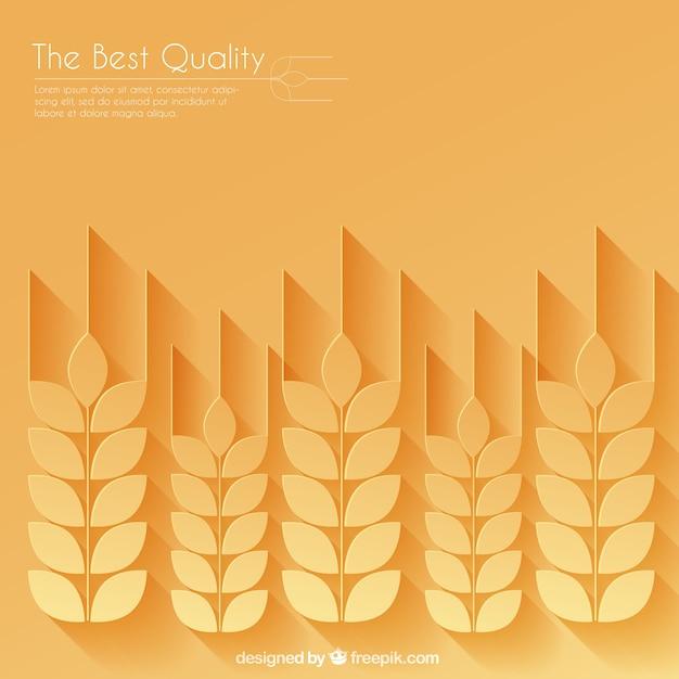 Weizen ohren hintergrund