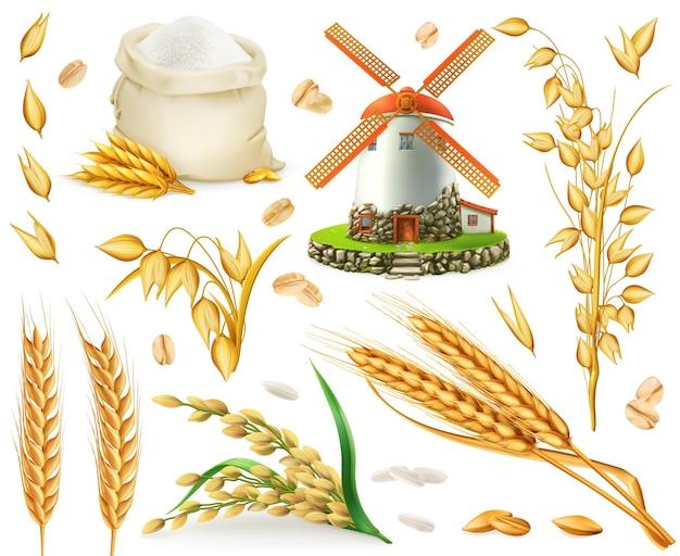 Weizen, reis, hafer, gerste, mehl, mühle, getreide. 3d realistische vektorelemente gesetzt