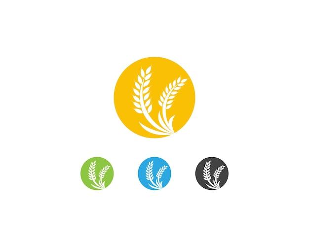Weizen reis logo vorlage