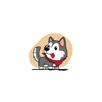 Welpe des sibirischen huskys mit roter schalikone